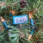 ticket on Christmas tree